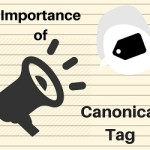 Canonical Tag – An Essential Part of Every Website