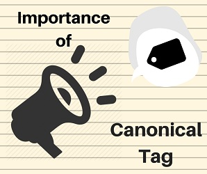 Importance of Canonical Tag